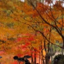 天然の油彩画