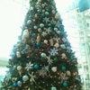 2タミのツリー☆の画像