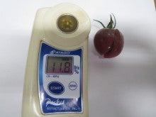 須藤物産トマト屋さんのブログ-糖度検査ノーブルバイオレット11.8度