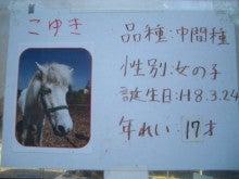 やすこ先生の日記帳