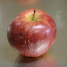 「あの」 りんご
