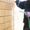 新設外壁タイルの酸洗い・クリーニング・洗浄の画像