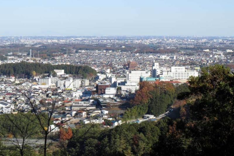竜ヶ谷城(毛呂山)/主郭からの眺め