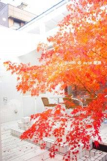 京都散歩の旅-銭湯カフェ「嵯峨野湯」