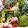 愛知県渥美半島のおいしい野菜セット♫の画像