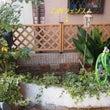 お庭改造計画2