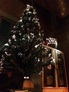 $「さやまのお店めぐり」-お店の入り口に飾ってあるクリスマスツリー