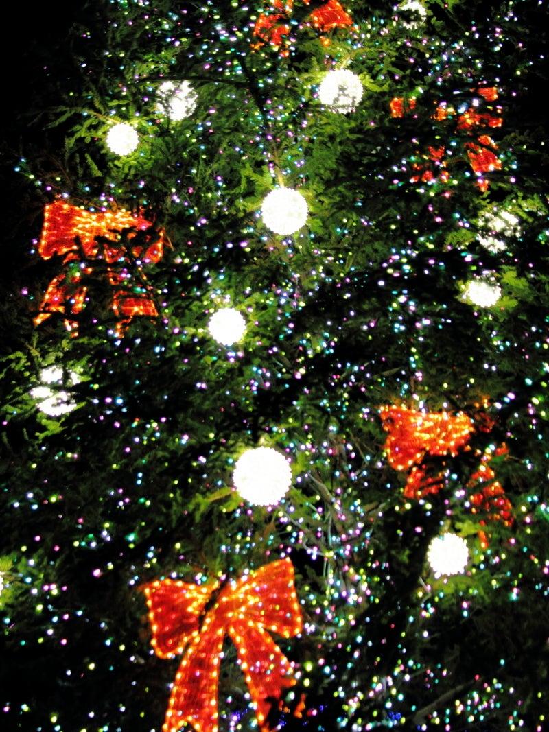 クリスマス 壁紙 Iphone Android 四季の彩り