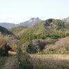 韓国との国境対馬は神所がいっぱい!の画像
