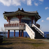 島大國魂神社は凄まじく強いパワー!!対馬 長崎県の画像