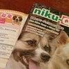 動物愛護シンポジウムのお知らせの画像