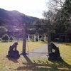 白嶽に登る前にご挨拶するべき神社★白嶽神社 対馬 長崎県の画像