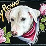 調布市のチョークアーティスト 看板・ウェルカムボード制作-チョークアートで描いたペットの犬