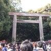 熱田神宮~の画像