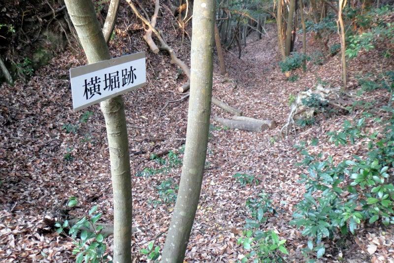 馬ヶ岳城/⑩横堀