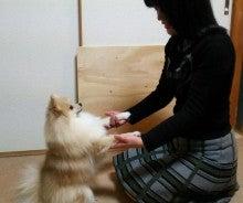 花田理恵さんと優君