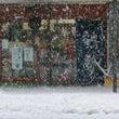 新潟は雪!