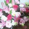 横浜凱旋公演、初日ANDお花!!!の画像