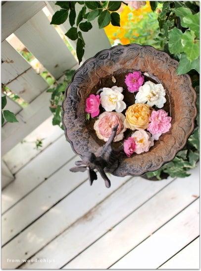 rose garden バラの庭づくり