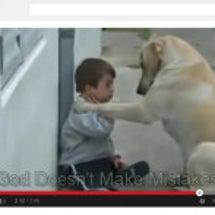 犬の優しさが伝わって…