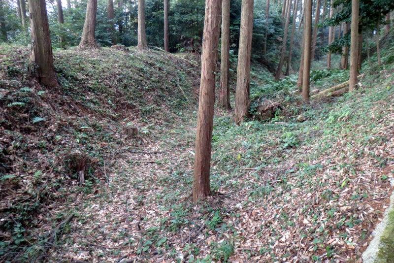 千手城/④土塁と空堀