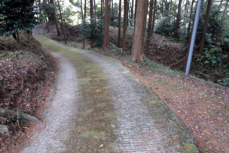 千手城/③上から見た土塁と空堀