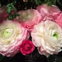 今日のお花♡