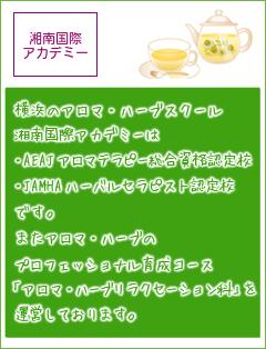 湘南国際アカデミー(アロマ)