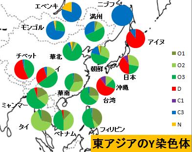 Y染色体分析による考察】日本人と朝鮮人の違い | penguinのブログ