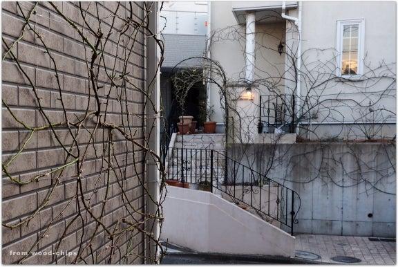 横浜市青葉区 バラの庭 壁面 誘引