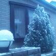 ざ・雪 2014♪