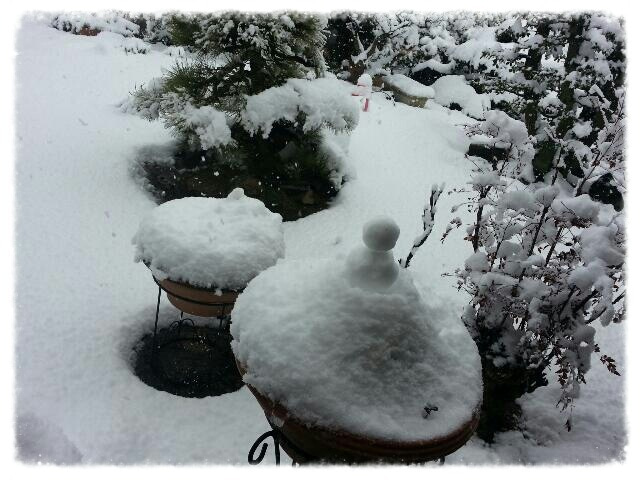 積もる 降りしきる よう に 雪が