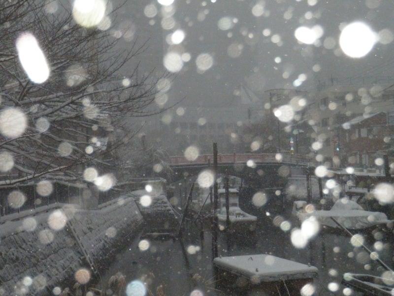佃小橋 雪2014-2
