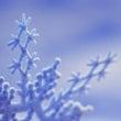 大雪の日は