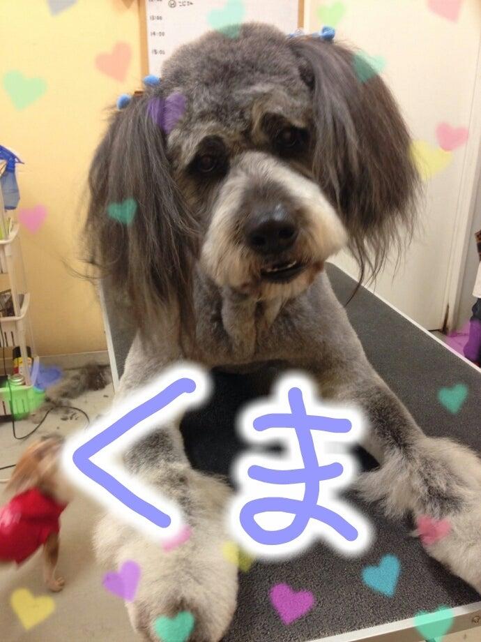 Valentine♡2/3~7の記事より