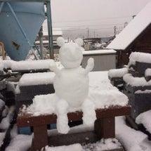 雪雪雪⛄️