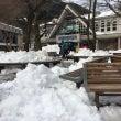 大雪の後の高尾山
