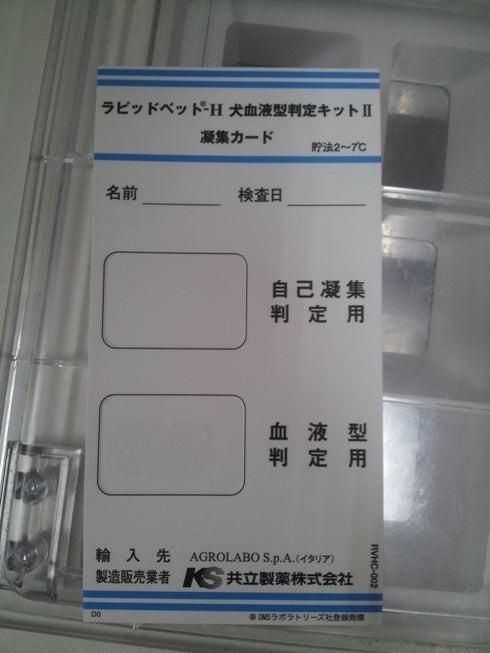 型 検査 キット 血液