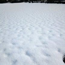 雪降らないで~(´;…