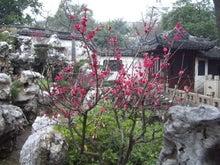 豫園庭園3
