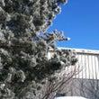 ☆樹氷 IN Ohi…