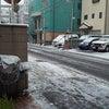 雪 雪 雪 !!の画像