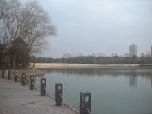 公園の池3