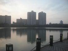 公園の池2