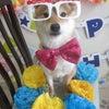 一郎3歳の誕生日の画像