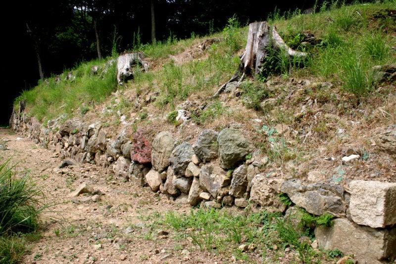 国吉城/05城主居館の石垣