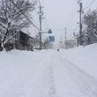 記録的大雪のため