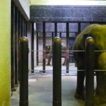 天王寺動物園とその他
