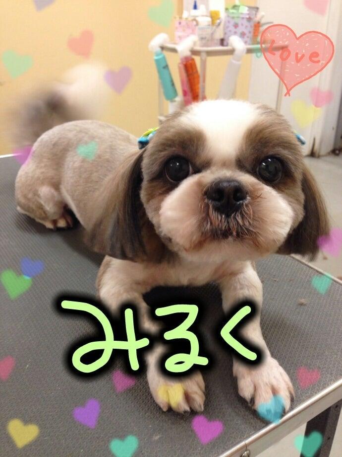 Valentine♡2/8、9の記事より