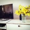 春を待つの画像